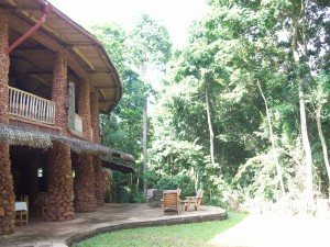 Mabira Forest Lodge, Mabira Forest